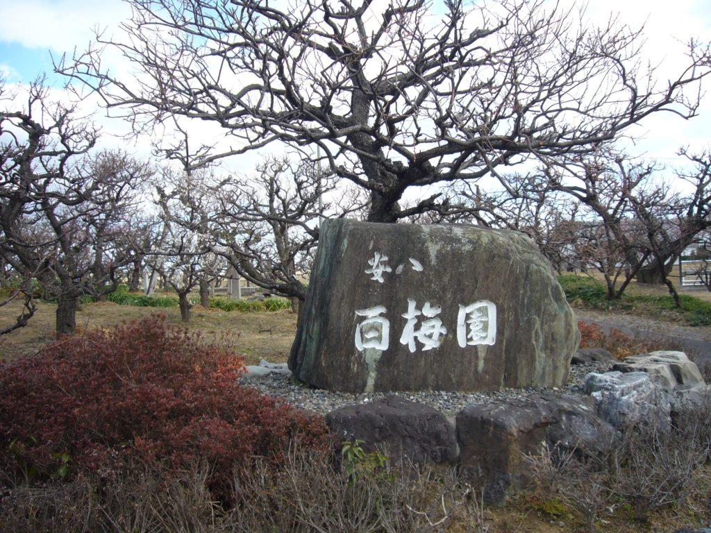 安八百梅園の石碑