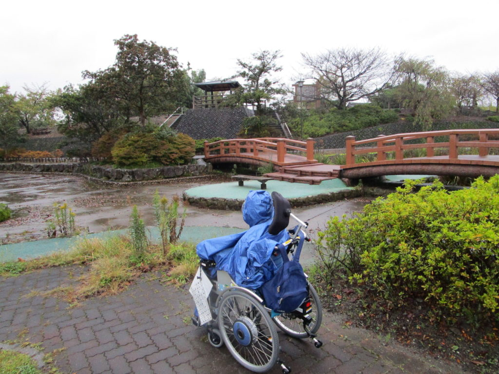 ばら公園の中の菖蒲園