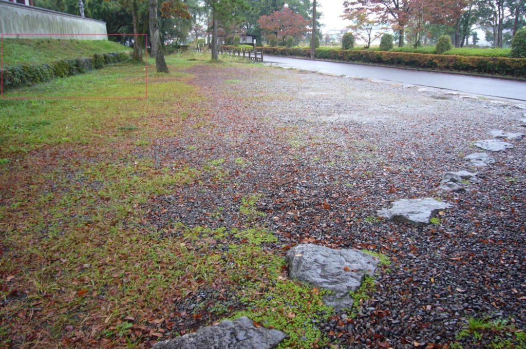 曽根城本丸跡の土塁と石垣
