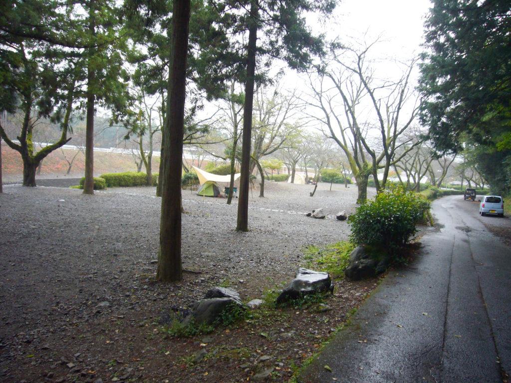 木立の中のキャンプ場